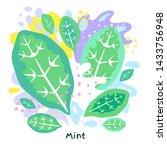 fresh green mint leaf vegetable ... | Shutterstock .eps vector #1433756948