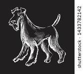 Fox Terrier. Dog. T Shirt...