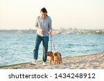 Stock photo young woman walking her adorable brussels griffon dogs near river 1434248912