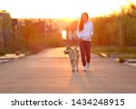 Stock photo young woman walking her adorable akita inu dog outdoors 1434248915