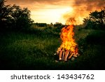 Bonfire At A Camp In Natural...