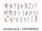 minimalistic flower graphic... | Shutterstock .eps vector #1434480812