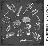 Sketch Of Autumn Symbols On...