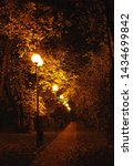 late evening in autumn Park. park alley, autumn trees and lights lanterns at night. copy space - stock photo