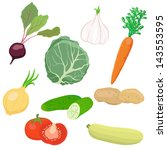 vector vegetable set | Shutterstock .eps vector #143553595