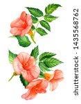 Set Of Tropica Flowersl ...