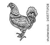 black white chicken detail... | Shutterstock .eps vector #1435771928