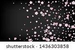 nice sakura blossom isolated... | Shutterstock .eps vector #1436303858