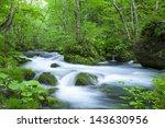 stream in green forest | Shutterstock . vector #143630956