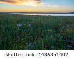 5 minutes before sunrise in the ... | Shutterstock . vector #1436351402