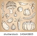 vegetable theme collection 3  ... | Shutterstock .eps vector #143643805