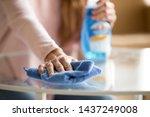 Close Up Of Female Housekeeper...
