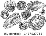 vector set of hand drawn black... | Shutterstock .eps vector #1437627758