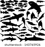 Vector Set Of Various Fish...
