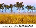 Albinia National Park ...