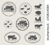 Stock vector a set of labels for butchery icons of beef pork lamb and chicken 143814085