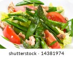 Closeup of plate of asparagus, snow pea and tomato salad with ginger dressing. - stock photo