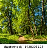 old trees in the park ... | Shutterstock . vector #1438305125