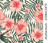 tropical flower pink hibiscus... | Shutterstock . vector #1438611875