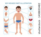 kids body. boy kid body parts... | Shutterstock .eps vector #1438833482