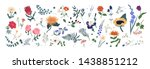 collection of wild blooming... | Shutterstock .eps vector #1438851212