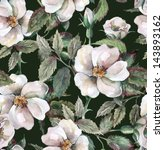 Stock photo wild roses seamless pattern 143893162