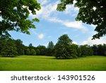 beautiful summer landscape in...   Shutterstock . vector #143901526