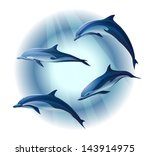 Set Of Four Dolphins  Vector...