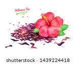 watercolor hand drawn... | Shutterstock . vector #1439224418