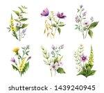 watercolor hand painted set of... | Shutterstock . vector #1439240945