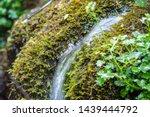 A Small Stream Flows Through...