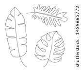 tropical leaves line drawing... | Shutterstock .eps vector #1439665772
