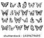 butterfly collection. beautiful ... | Shutterstock .eps vector #1439679695