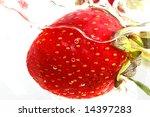 strawberry on white background... | Shutterstock . vector #14397283