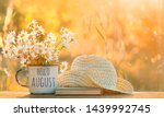 Small photo of hello August. chamomile flowers in Cup, old book, braided hat in garden. Rural landscape with Chamomile in sunlight. Summertime season. copy space