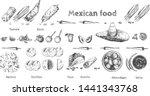 vector illustration of huge... | Shutterstock .eps vector #1441343768