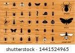 set of various insects in... | Shutterstock .eps vector #1441524965