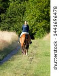 ruinen  the netherlands   july... | Shutterstock . vector #1441696478