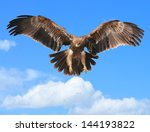 Постер, плакат: Eagles flying in the