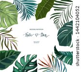 exotic tropical palm leaves... | Shutterstock .eps vector #1442104052