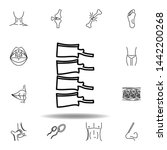 set of human organs spine bone...
