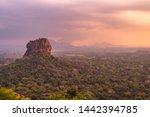 Pidurangala Ancient Forest...