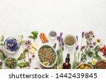 various kinds of herbal tea....   Shutterstock . vector #1442439845