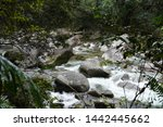 Water In Mossman Gorge  Creek...