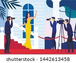 Celebrity On Red Carpet Flat...