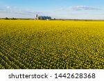aerial view new grain elevator... | Shutterstock . vector #1442628368