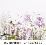 Floral Pattern With Wildflowers ...