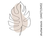 contour line drawing leaf of... | Shutterstock .eps vector #1442715452