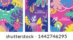set of colorful tropical...   Shutterstock .eps vector #1442746295