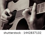 male musicians playing acoustic ... | Shutterstock . vector #1442837132